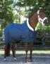 paard-pony-shetland-artikelen