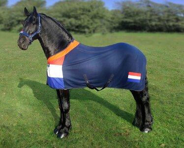 1323 HB Holland showdeken going to Rio